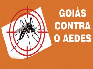 Vitória contra o Aedes: focos são reduzidos em 90%