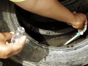 ?Goiás contra o Aedes reduz 61% dos focos do mosquito