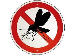 Municípios devem se mobilizar no combate ao Aedes Aegypti