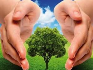 ?Municípios devem enviar questionários do ICMS Ecológico até dia 15