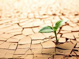 Comissão discutirá mudanças climáticas
