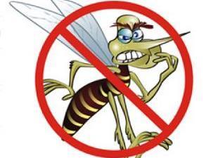 Começa a 2ª etapa da operação ?Goiás contra o Aedes?