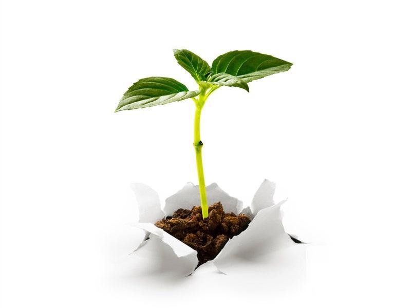 Projeto de lei define aplicação dos recursos do ICMS Ecológico